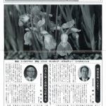 20101218_tokiwa_1[1]